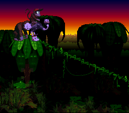 Donkey Kong Country - nice ostrich - User Screenshot